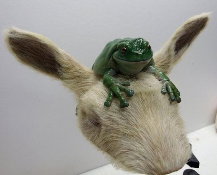 Trading Post Frog & Goat